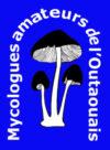 Mycologues amateurs de l'Outaouais